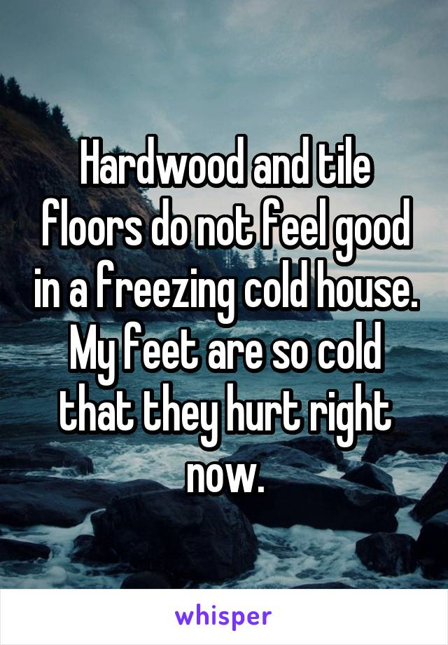 Hardwood and tile floors do not feel good in a freezing cold house. My feet are so cold that they hurt right now.