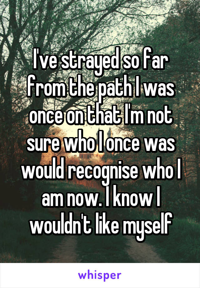 I've strayed so far from the path I was once on that I'm not sure who I once was would recognise who I am now. I know I wouldn't like myself