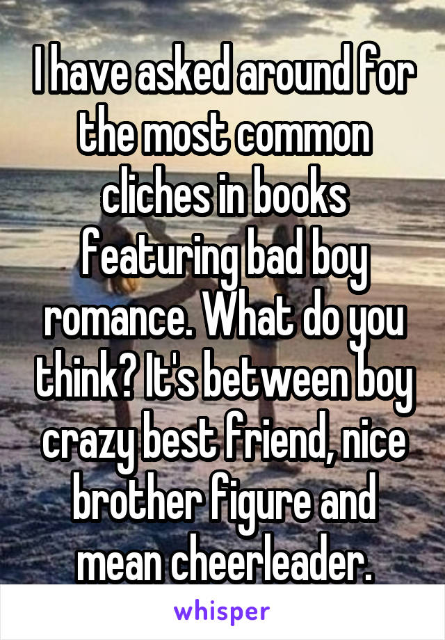 I have asked around for the most common cliches in books featuring bad boy romance. What do you think? It's between boy crazy best friend, nice brother figure and mean cheerleader.