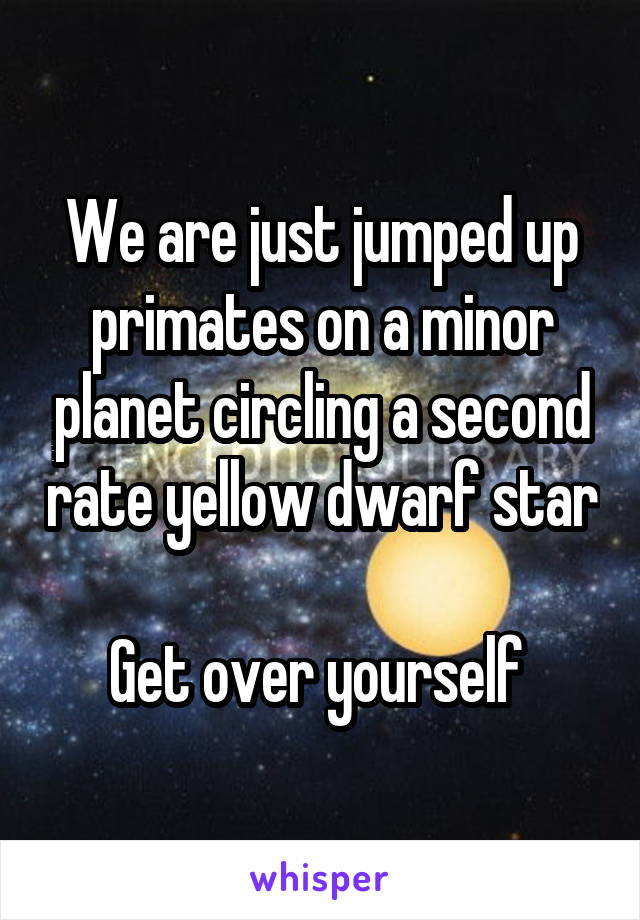 We are just jumped up primates on a minor planet circling a second rate yellow dwarf star  Get over yourself