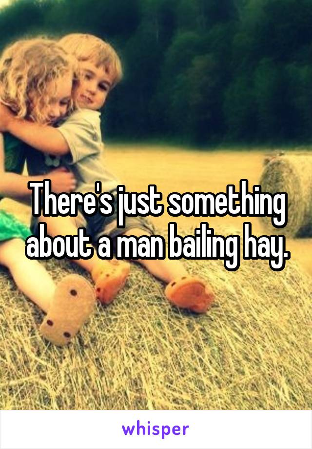 There's just something about a man bailing hay.