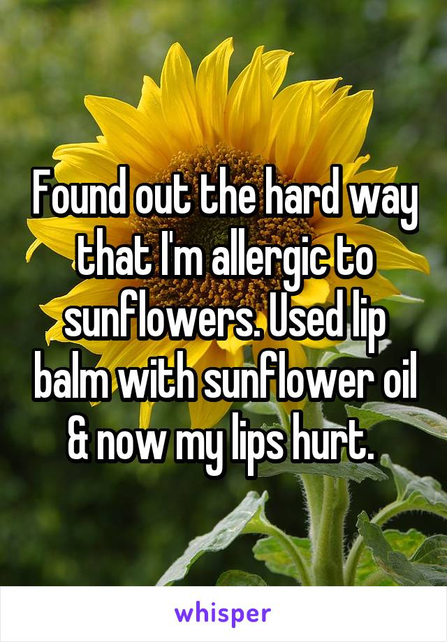 Found out the hard way that I'm allergic to sunflowers. Used lip balm with sunflower oil & now my lips hurt.