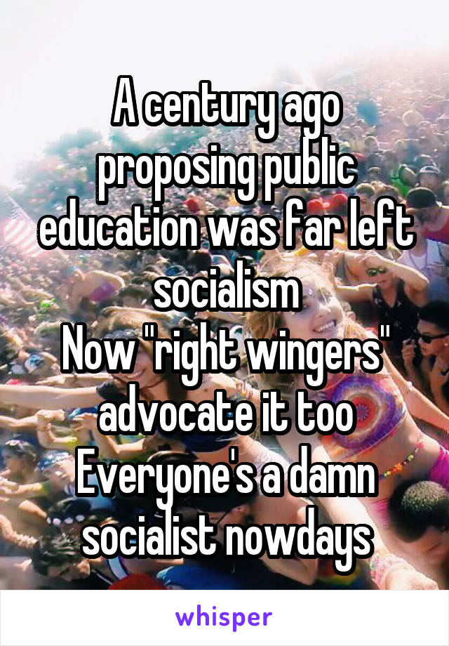 """A century ago proposing public education was far left socialism Now """"right wingers"""" advocate it too Everyone's a damn socialist nowdays"""