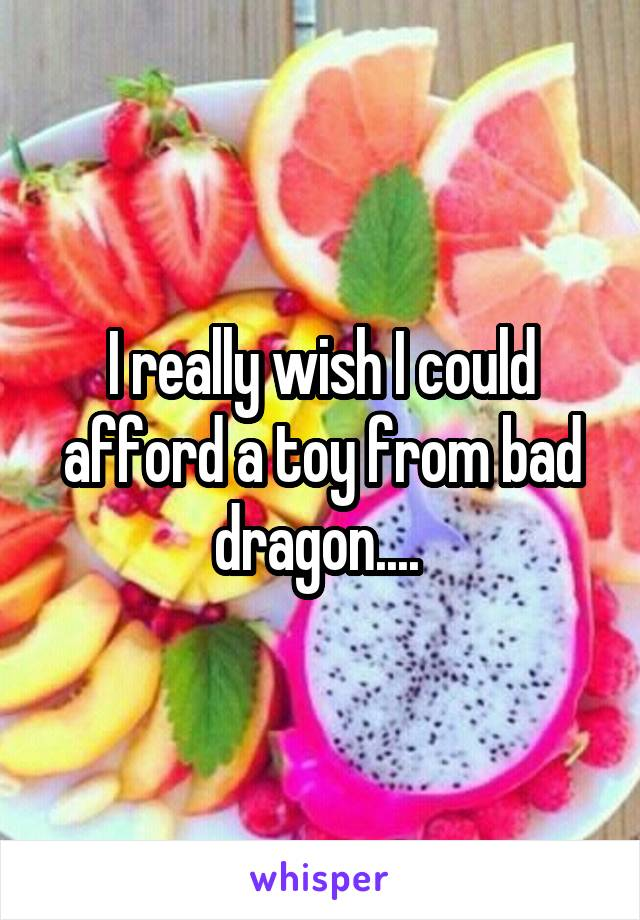 I really wish I could afford a toy from bad dragon....