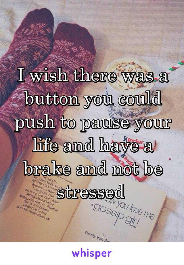 I wish there was a button you could push to pause your life and have a brake and not be stressed