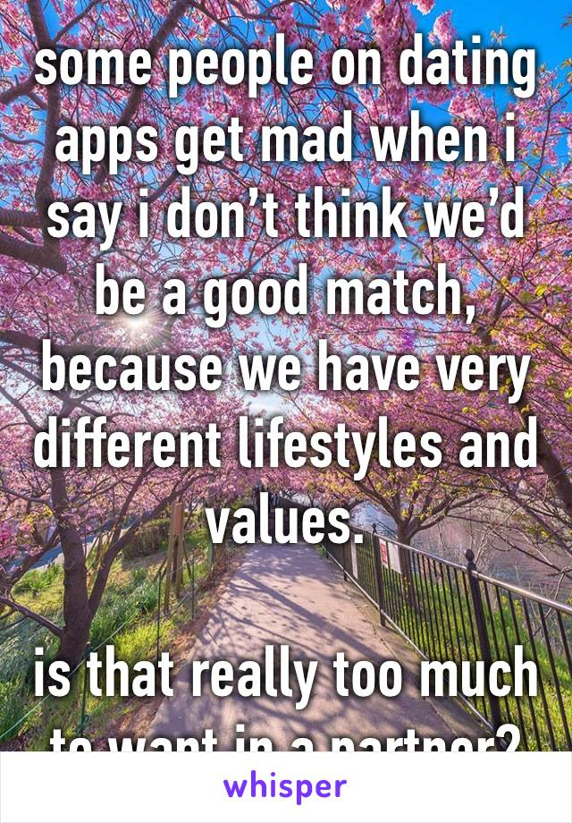 some people on dating apps get mad when i say i don't think we'd be a good match, because we have very different lifestyles and values.  is that really too much to want in a partner?