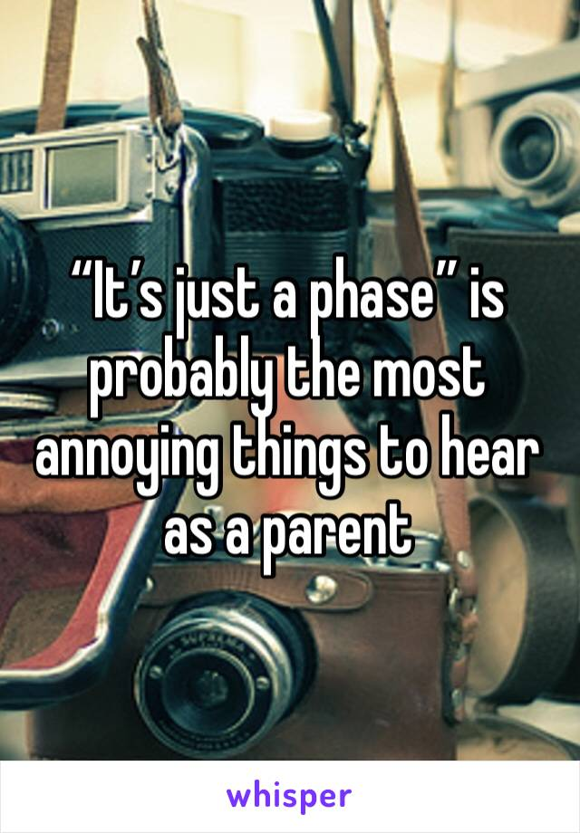 """""""It's just a phase"""" is probably the most annoying things to hear as a parent"""