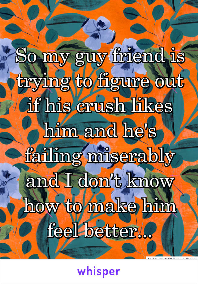 So my guy friend is trying to figure out if his crush likes him and he's failing miserably and I don't know how to make him feel better...
