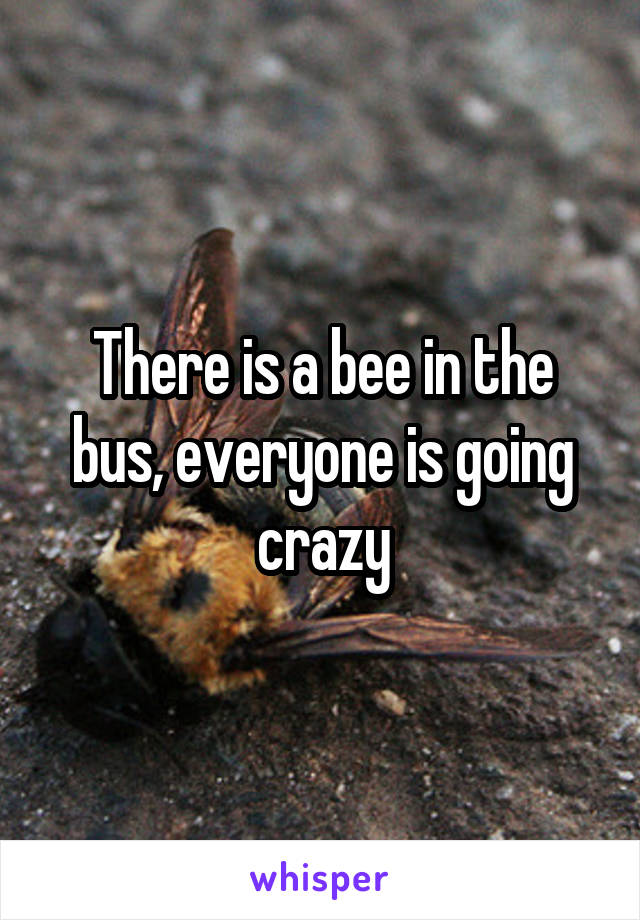 There is a bee in the bus, everyone is going crazy