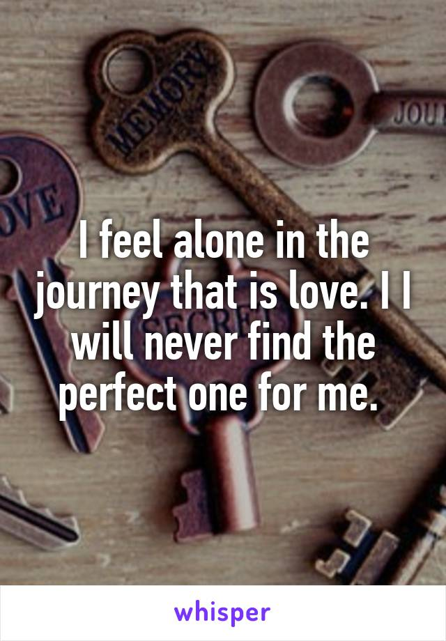I feel alone in the journey that is love. I I will never find the perfect one for me.