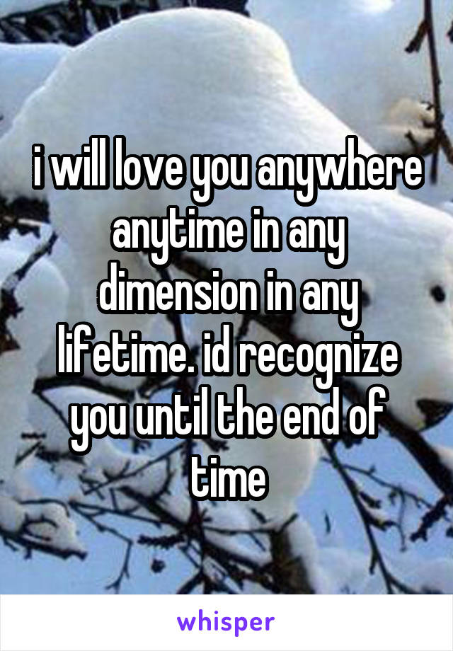 i will love you anywhere anytime in any dimension in any lifetime. id recognize you until the end of time