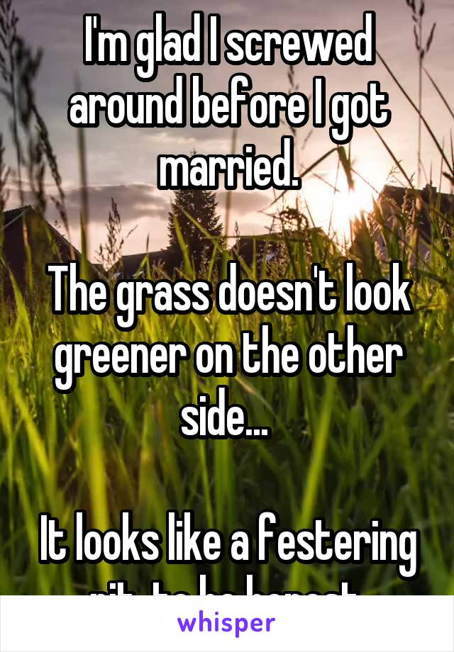 I'm glad I screwed around before I got married.  The grass doesn't look greener on the other side...   It looks like a festering pit, to be honest.