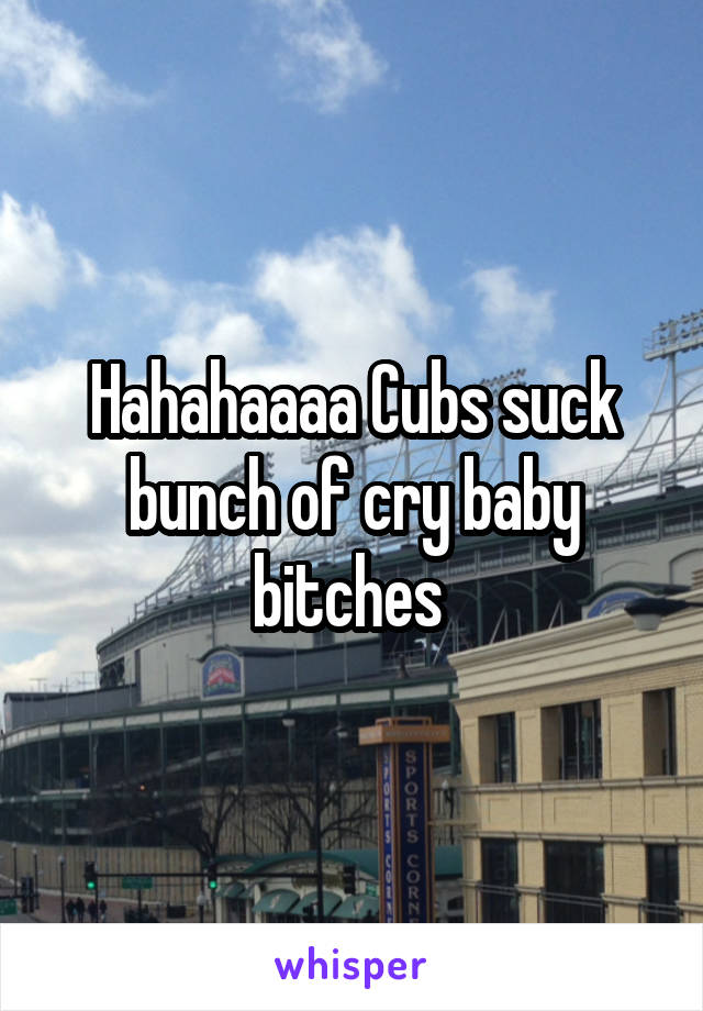 Hahahaaaa Cubs suck bunch of cry baby bitches