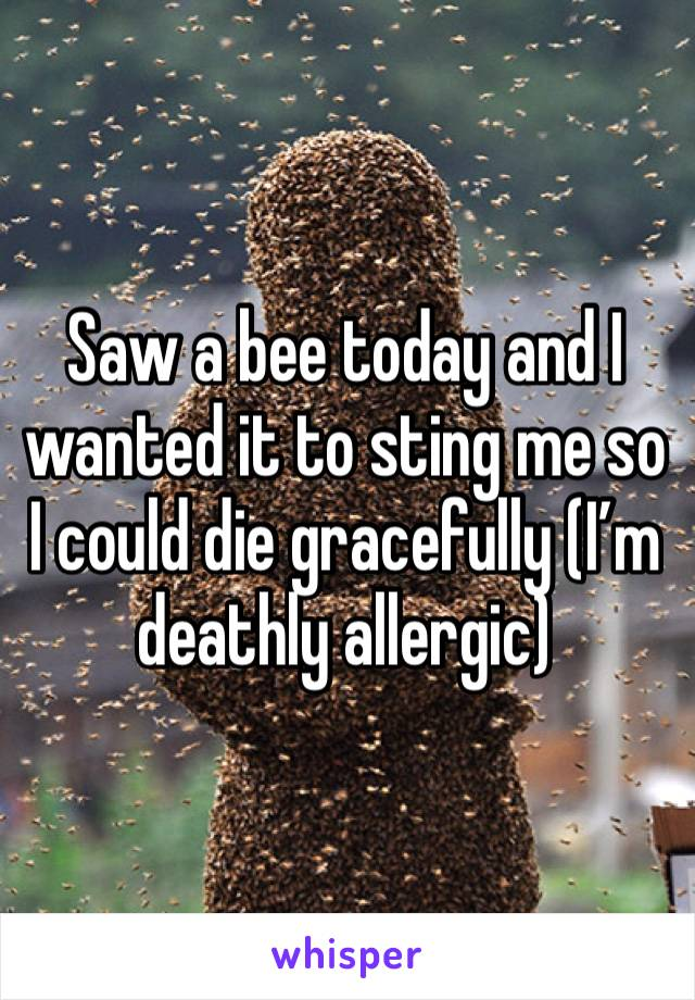 Saw a bee today and I wanted it to sting me so I could die gracefully (I'm deathly allergic)