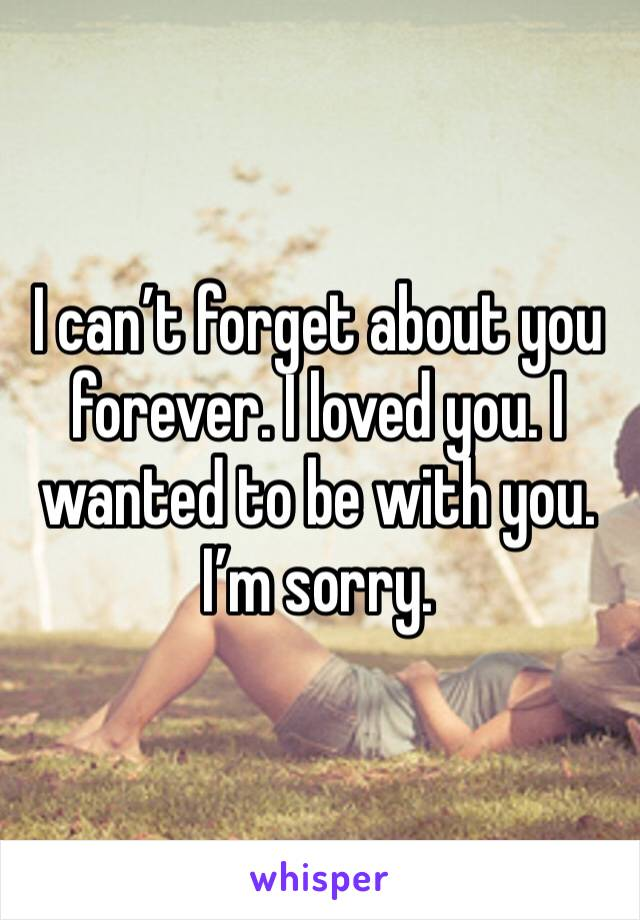 I can't forget about you forever. I loved you. I wanted to be with you. I'm sorry.