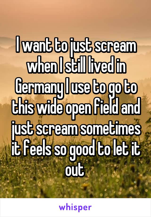 I want to just scream when I still lived in Germany I use to go to this wide open field and just scream sometimes it feels so good to let it out