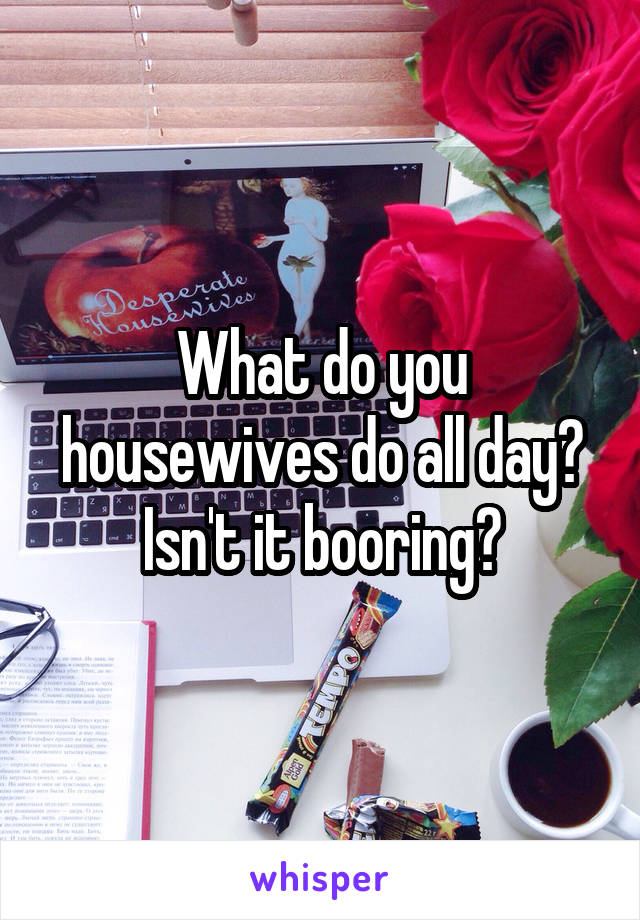 What do you housewives do all day? Isn't it booring?