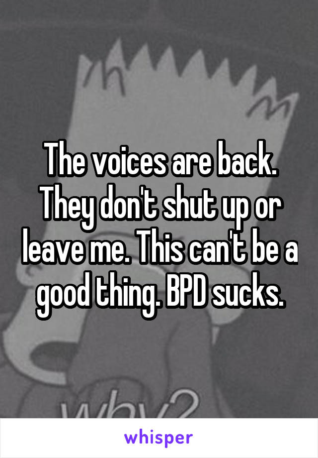 The voices are back. They don't shut up or leave me. This can't be a good thing. BPD sucks.