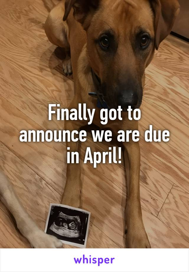 Finally got to announce we are due in April!