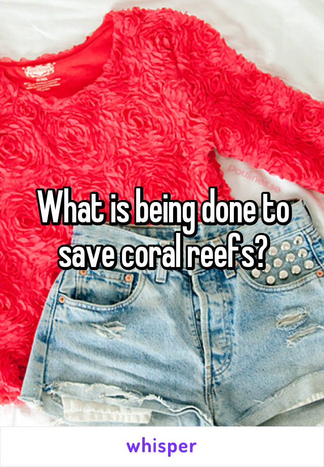 What is being done to save coral reefs?