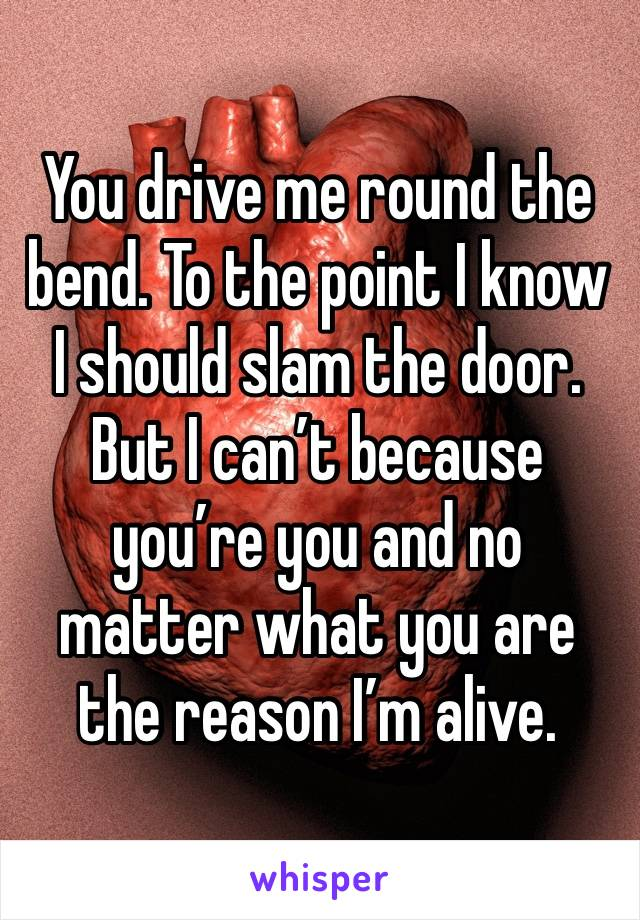 You drive me round the bend. To the point I know I should slam the door. But I can't because you're you and no matter what you are the reason I'm alive.