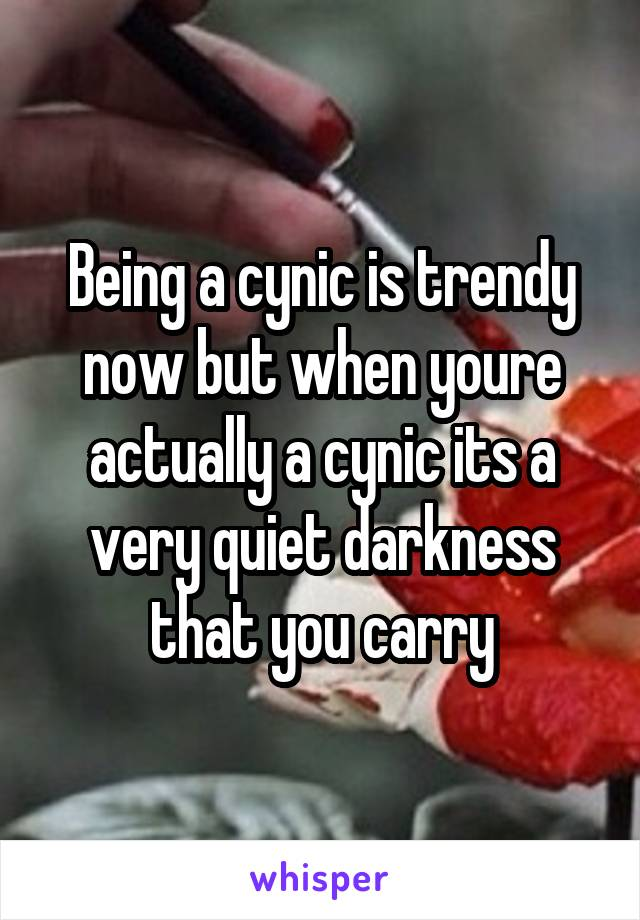 Being a cynic is trendy now but when youre actually a cynic its a very quiet darkness that you carry