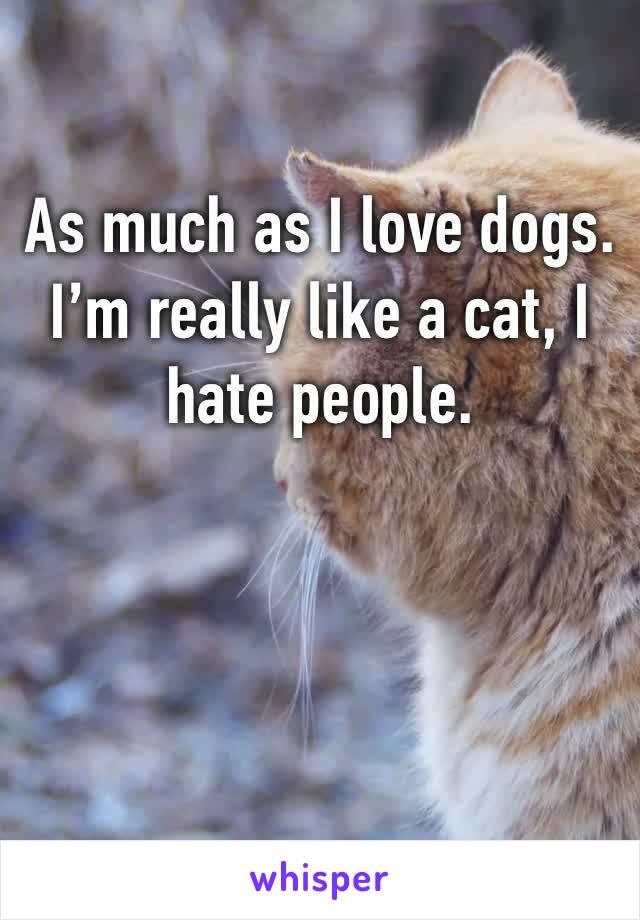 As much as I love dogs. I'm really like a cat, I hate people.