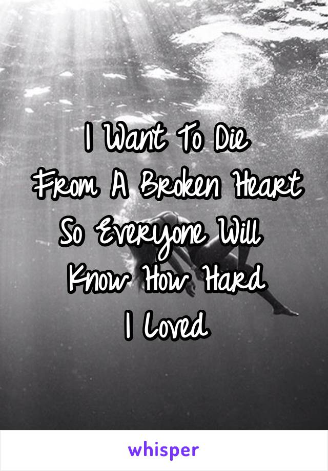 I Want To Die From A Broken Heart So Everyone Will  Know How Hard I Loved