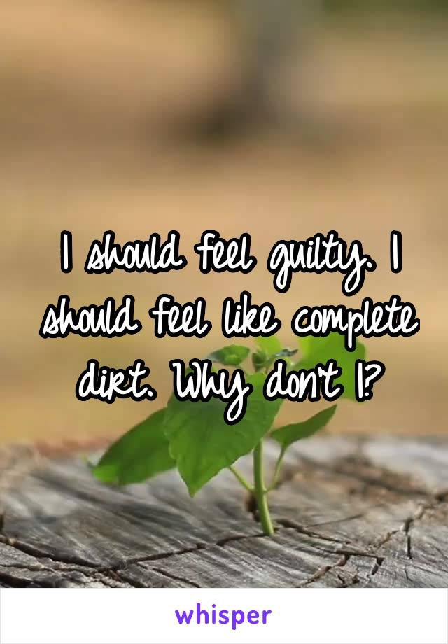 I should feel guilty. I should feel like complete dirt. Why don't I?