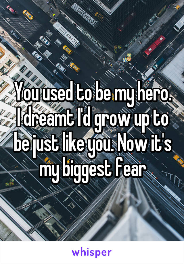 You used to be my hero. I dreamt I'd grow up to be just like you. Now it's my biggest fear