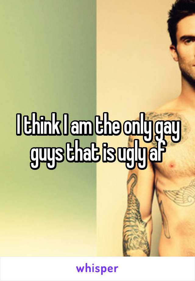 I think I am the only gay guys that is ugly af