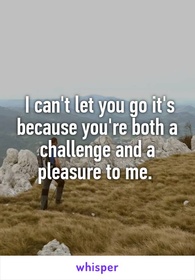 I can't let you go it's because you're both a challenge and a pleasure to me.