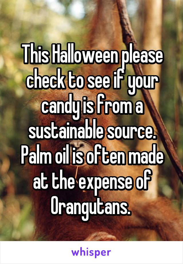This Halloween please check to see if your candy is from a sustainable source. Palm oil is often made at the expense of Orangutans.