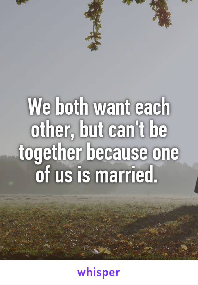 We both want each other, but can't be together because one of us is married.