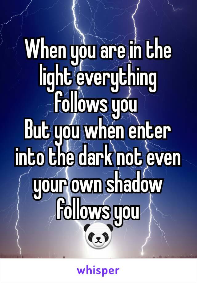 When you are in the light everything follows you  But you when enter into the dark not even your own shadow follows you 🐼