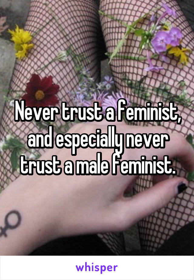 Never trust a feminist, and especially never trust a male feminist.