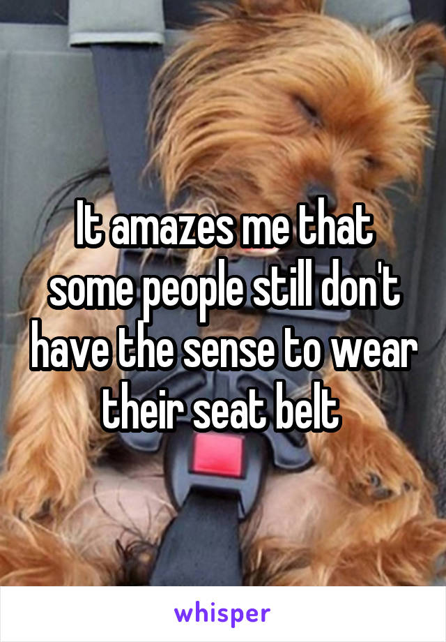 It amazes me that some people still don't have the sense to wear their seat belt
