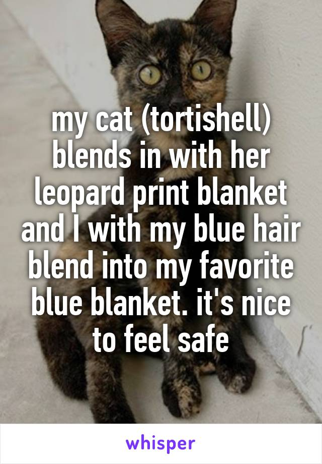 my cat (tortishell) blends in with her leopard print blanket and I with my blue hair blend into my favorite blue blanket. it's nice to feel safe