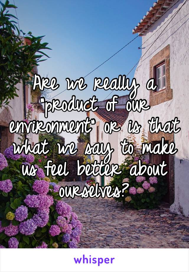 "Are we really a ""product of our environment"" or is that what we say to make us feel better about ourselves?"