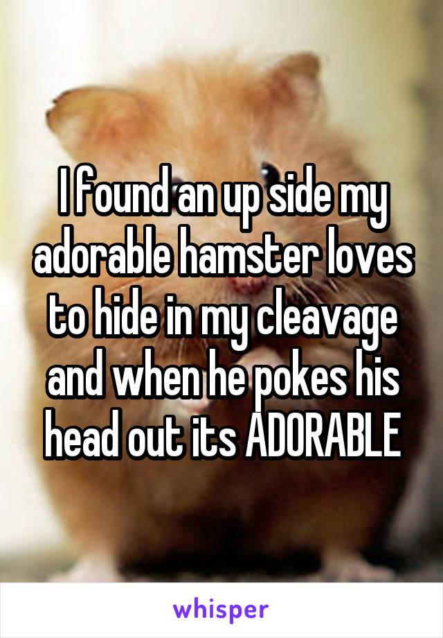 I found an up side my adorable hamster loves to hide in my cleavage and when he pokes his head out its ADORABLE