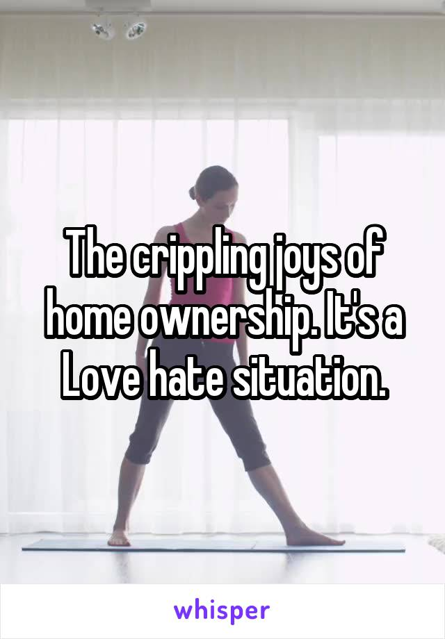 The crippling joys of home ownership. It's a Love hate situation.