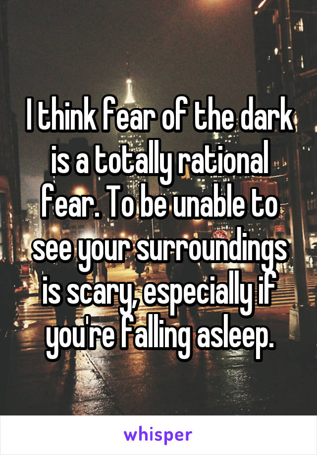 I think fear of the dark is a totally rational fear. To be unable to see your surroundings is scary, especially if you're falling asleep.