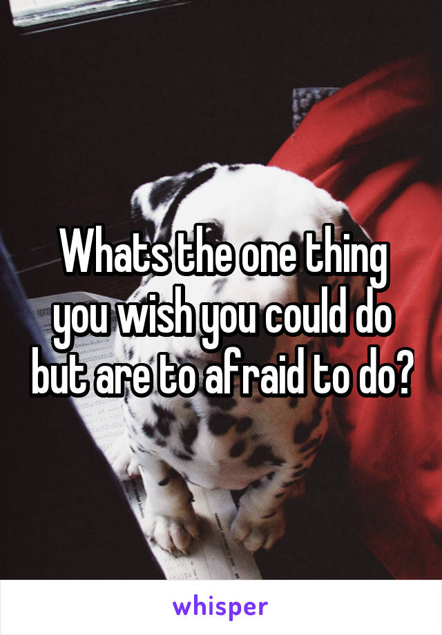 Whats the one thing you wish you could do but are to afraid to do?