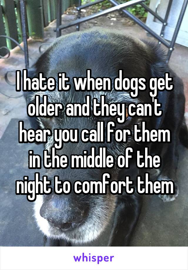 I hate it when dogs get older and they can't hear you call for them in the middle of the night to comfort them