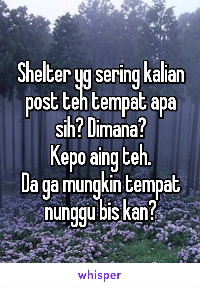 Shelter yg sering kalian post teh tempat apa sih? Dimana? Kepo aing teh. Da ga mungkin tempat nunggu bis kan?