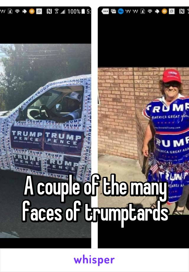 A couple of the many faces of trumptards