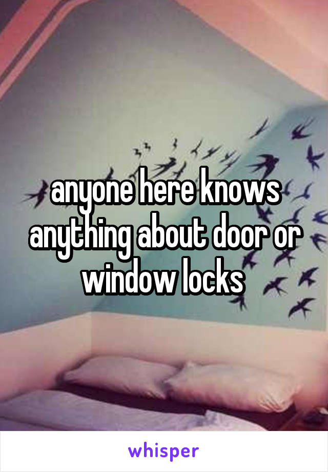anyone here knows anything about door or window locks