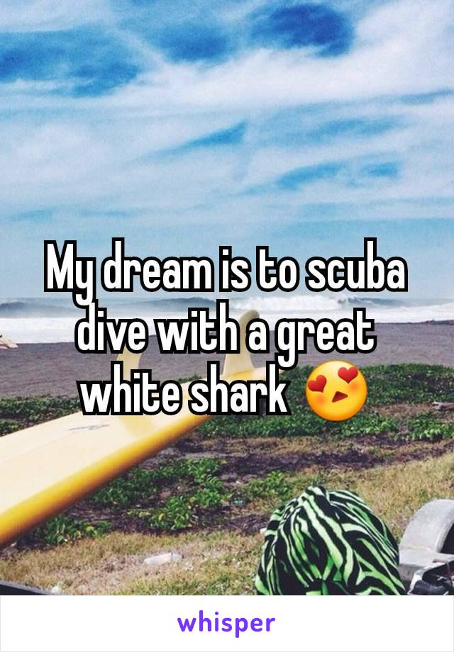 My dream is to scuba dive with a great white shark 😍