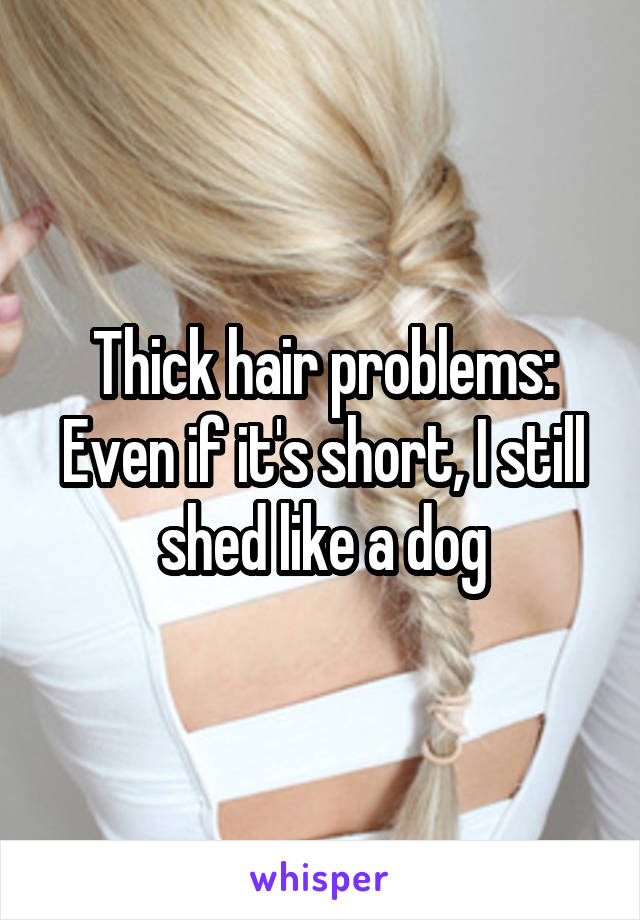 Thick hair problems: Even if it's short, I still shed like a dog