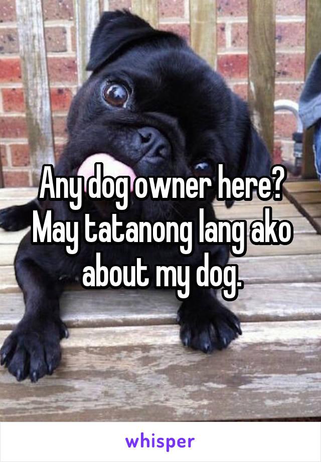 Any dog owner here? May tatanong lang ako about my dog.